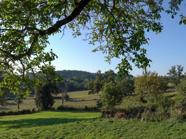 Paysage - Plateau de Millevaches