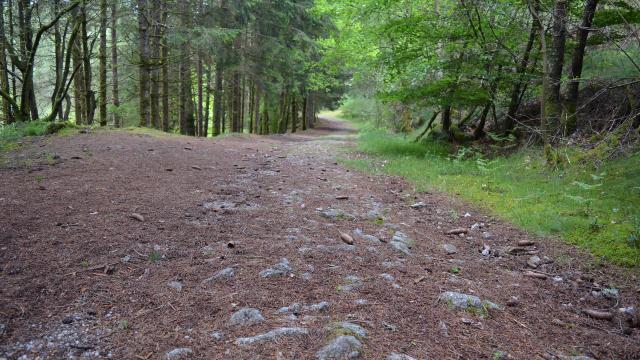 Randonnée en Creuse