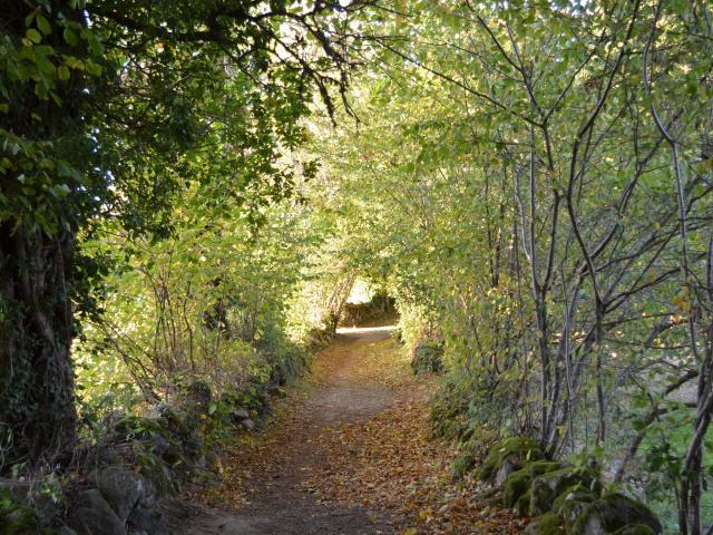 Chemin de randonnée en Creuse