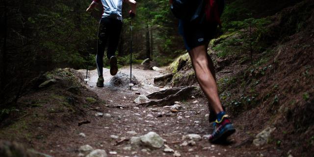 Trail Plateau De Millevaches