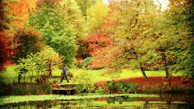 Jardin D'automne En Creuse ©j.froment