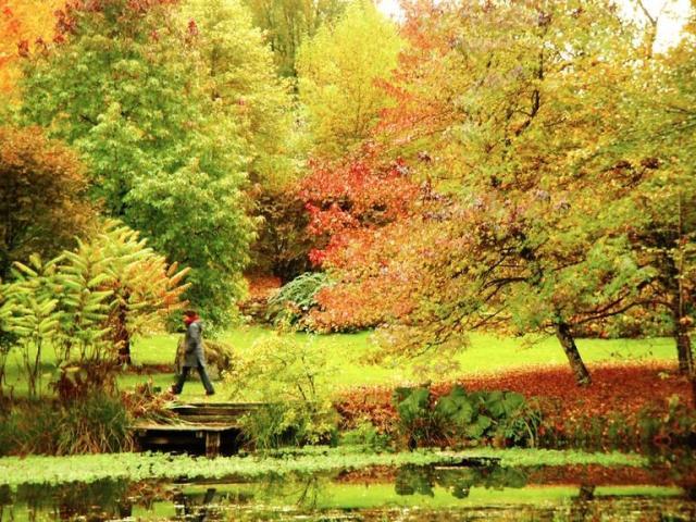 Arboretum de la Sédelle - Crozant ©J.Froment