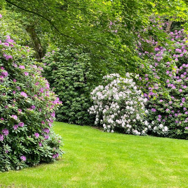 Arboretum De La Sédelle 2