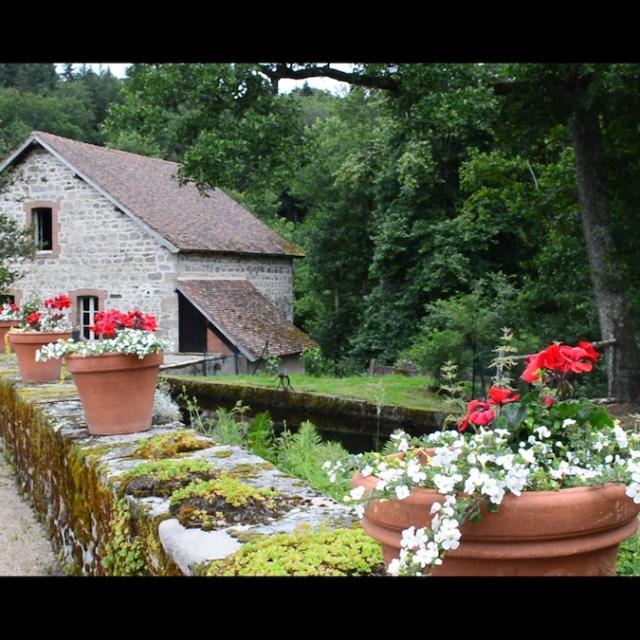 Jardin De Banizette6