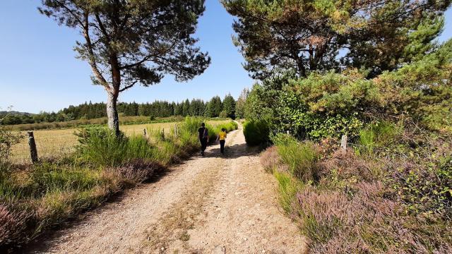 Randonnée Millevaches Vallée De La Chandouille Gentioux