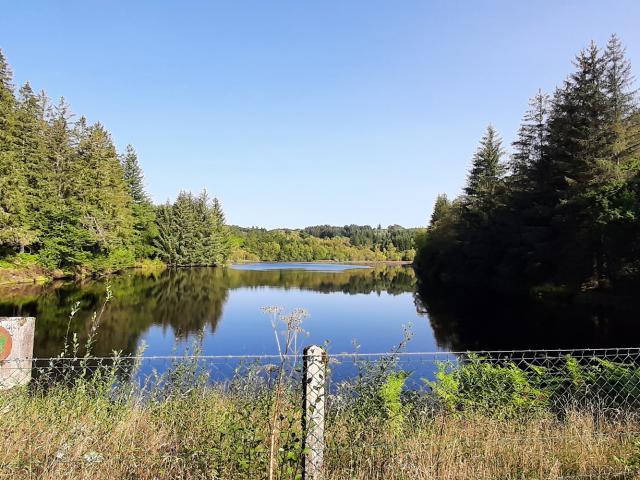 Randonnée Millevaches Vallée De La Chandouille Gentioux étang