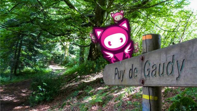 Zamela Puy Gaudy