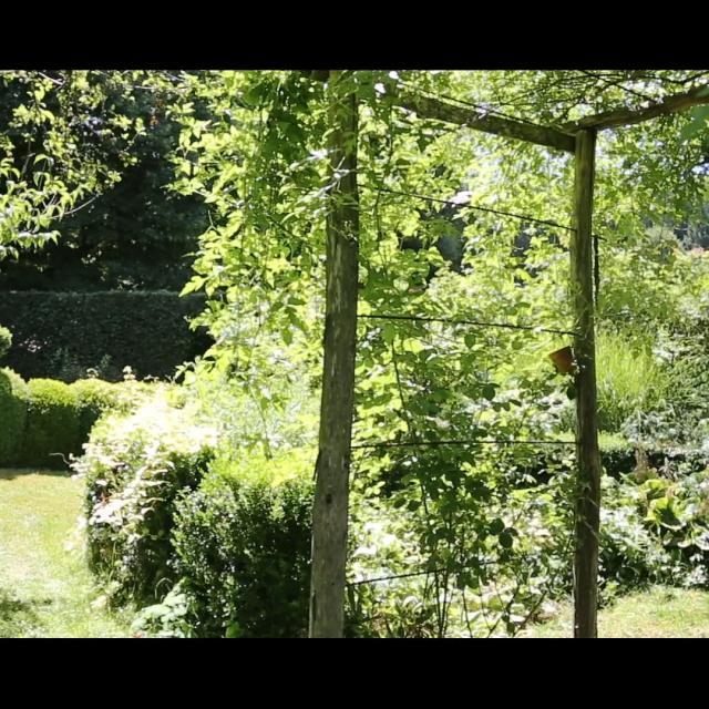 Jardin De La Sagne 10