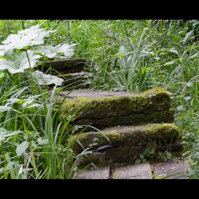 Jardin Clos Du Prefons8
