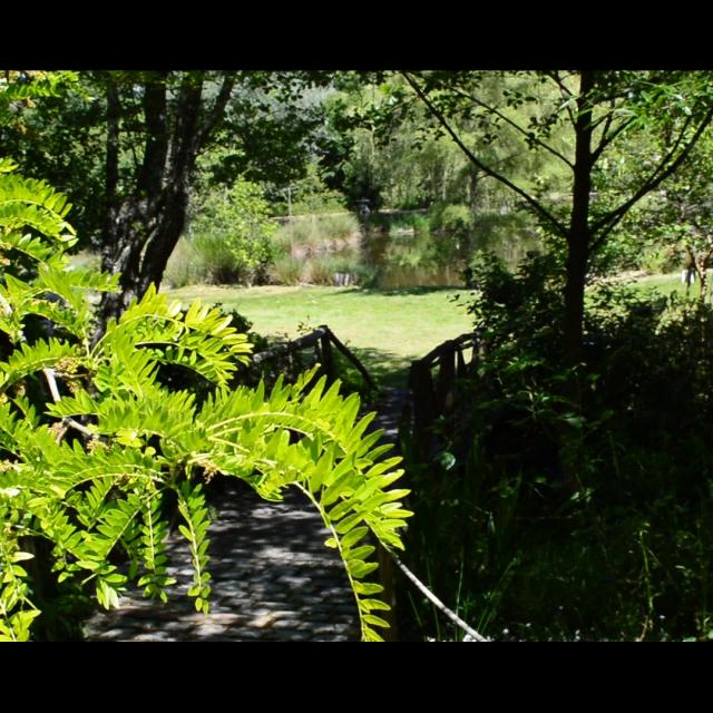 Jardin Artbotanic