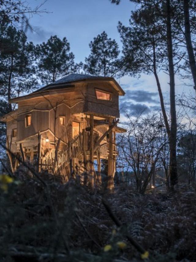 Cabanes du Center Parcs le Bois aux Daims