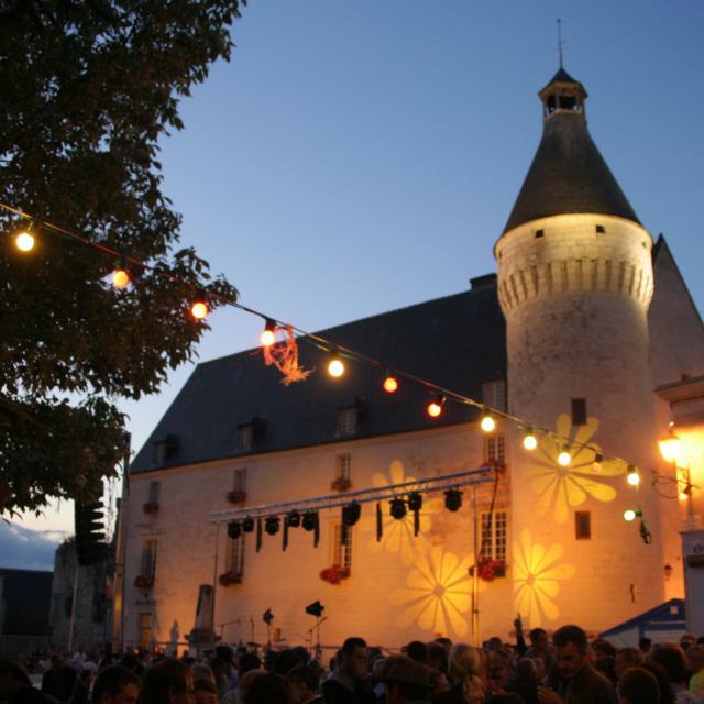 Château de Monts-sur-Guesnes de nuit