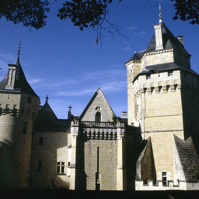 Vue du château de Ternay