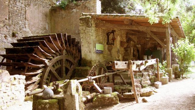 24-moulin-de-chollay.jpg