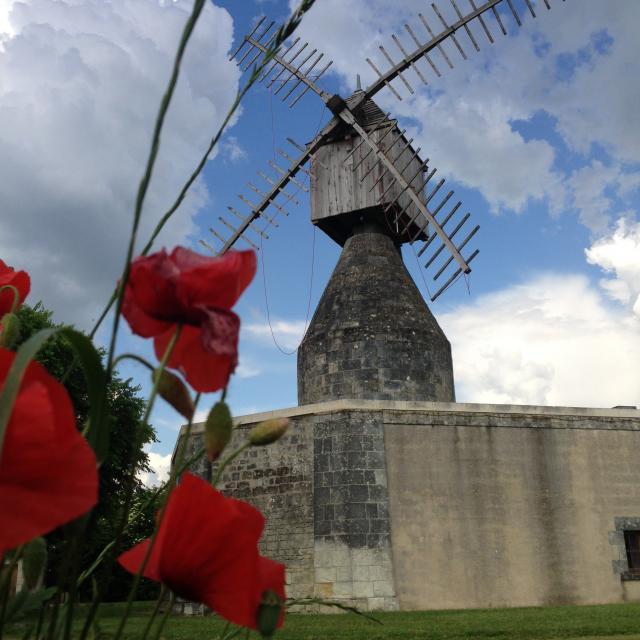 Moulin Puy D'ardanne