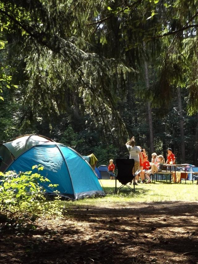 Camp 1163419 1920