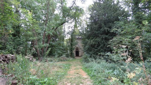 54 Château De La Mothe Chandeniers Juillet2020 ©ccpl