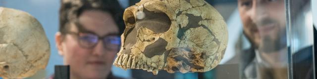 Musée de préhistoire - Thorigné-en-Charnie