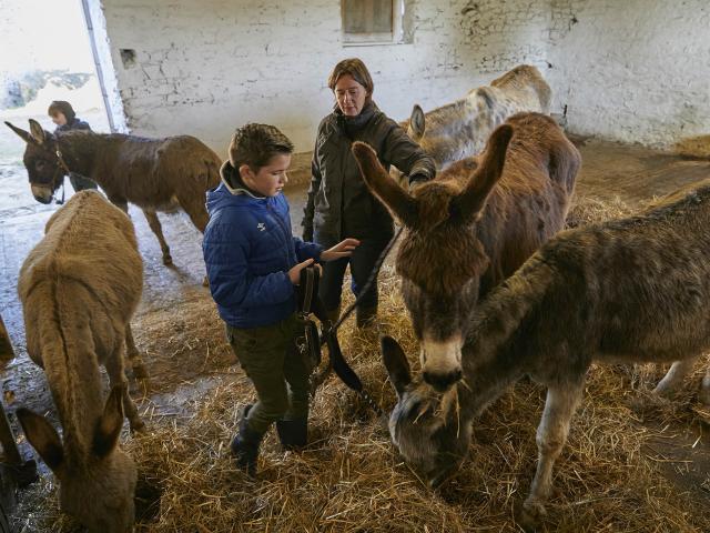 Asinerie Bois Gamat - Enfant et âne