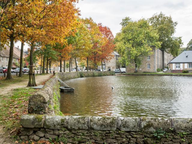 Fontaine Daniel  -- Les Toiles de Mayenne