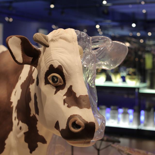 La cité du lait - Lactopôle®