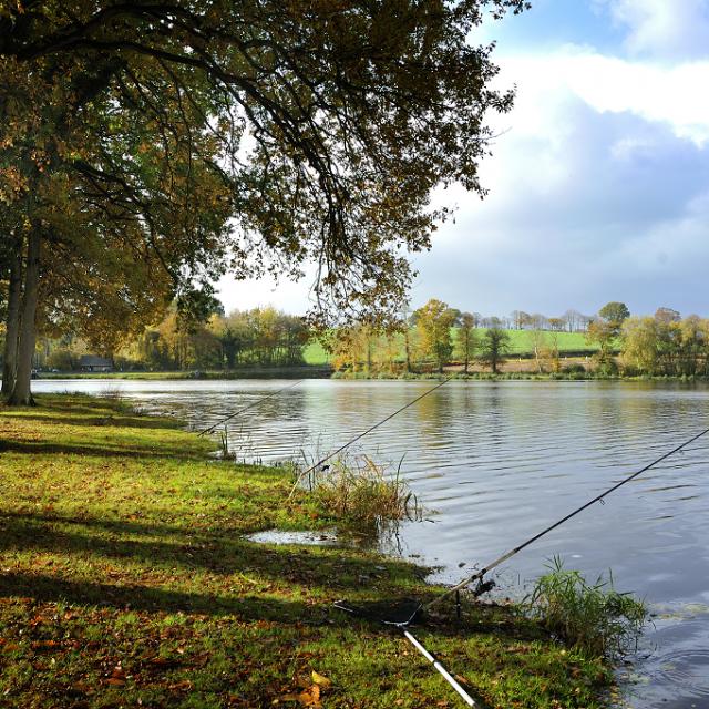 Pêche étang Neuf Juvigné