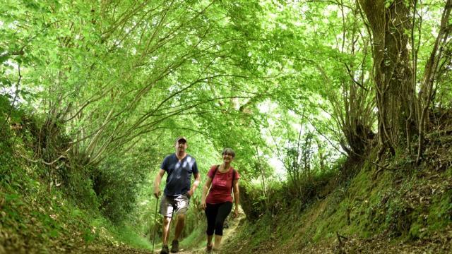 Randonnée en Haute Mayenne