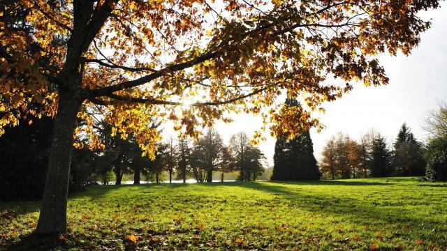 Parc des Forges - Aron