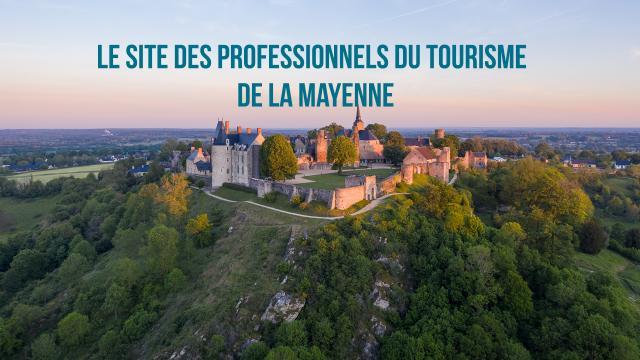 Site Pro Mayenne Tourisme