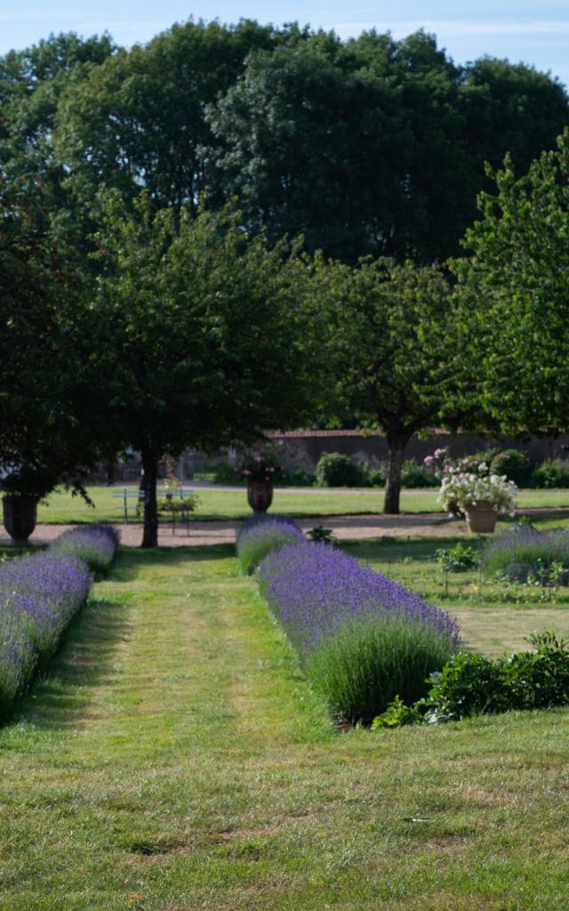 Chateau De La Rongere Saint Sulpice Cp Pascal Beltrami Mayenne Tourisme 1920px (4)