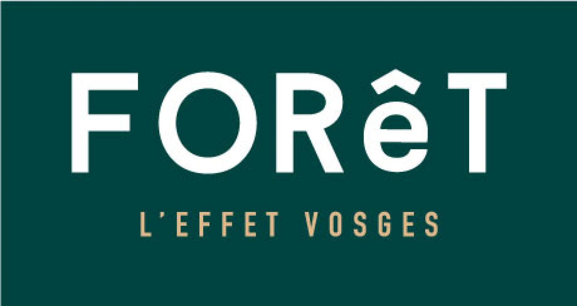 Forêt l'Effet Vosges