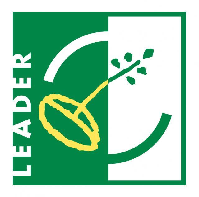 Leader Hdprint 01 Copie