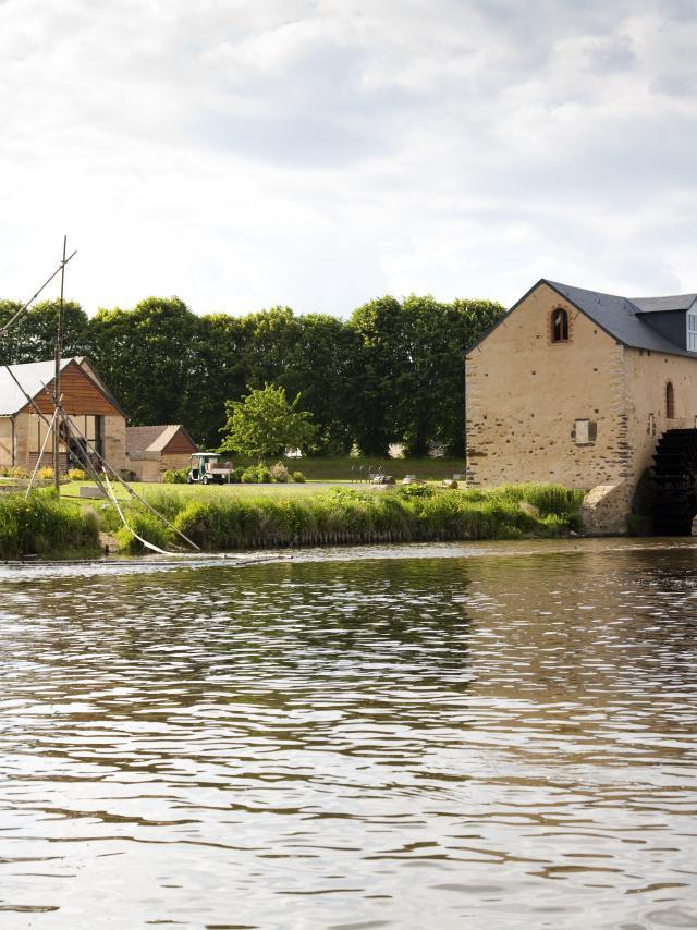 Vallée-de-la-Sarthe-Fillé-Ile-MoulinSart