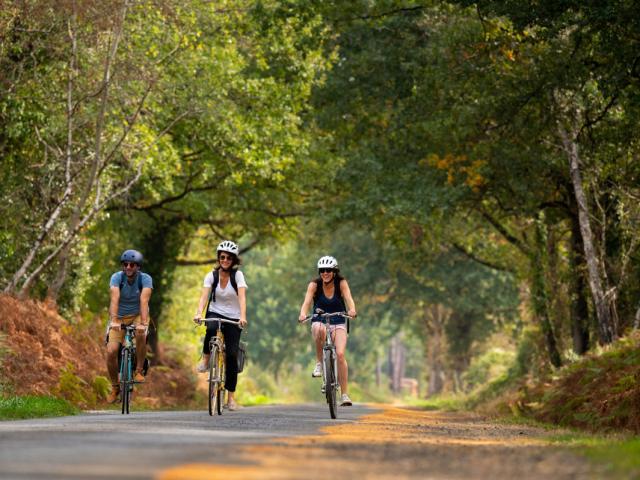 La Vélobuissonnière - Vélo Route