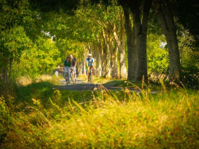 La Vélobuissonnière©pascal Beltrami Sarthe Tourisme (6)