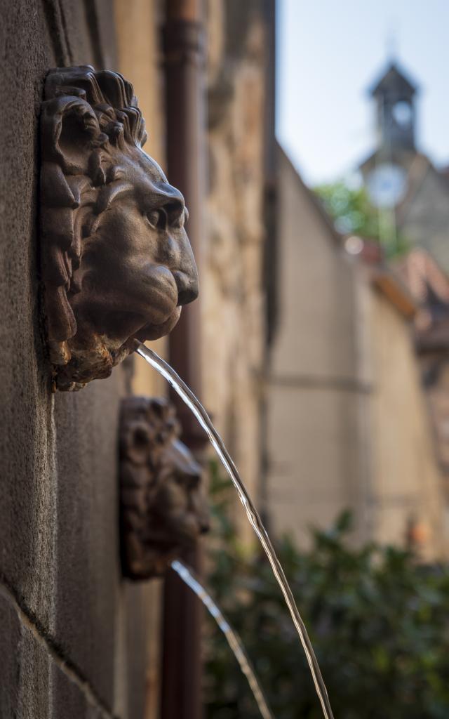 fontaine-aux-lions-montlucon-01