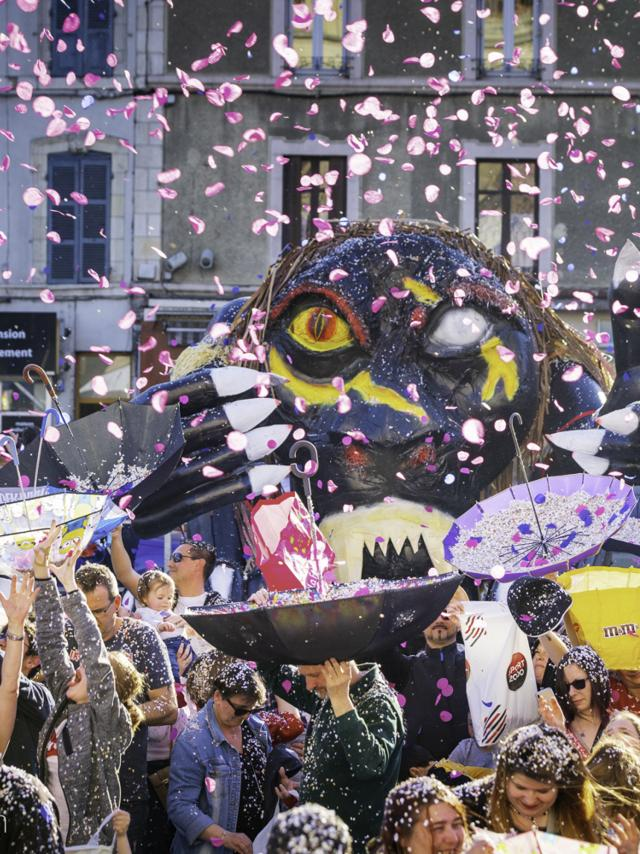 Carnaval Du Boeuf Ville Montlucon 09