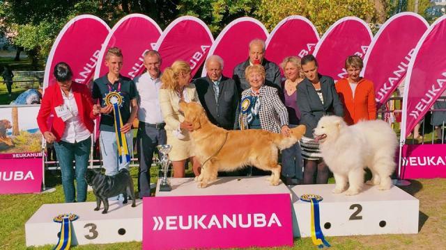 expo-canine-internationale-montlucon-04
