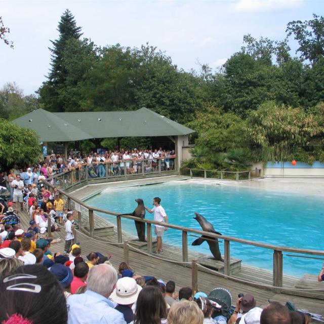 Animations Zoo La Fleche (large)