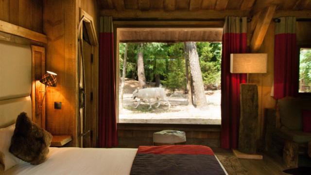 Lodge zoo La Flèche