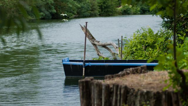 Barques Durtal 2010©stevan Lira (23)