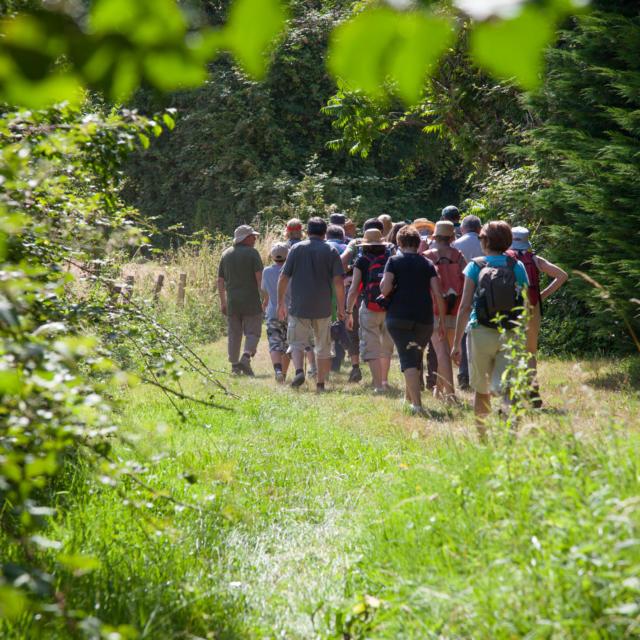 Randonnée visite à Thorée-les-Pins (Vallée du Loir)
