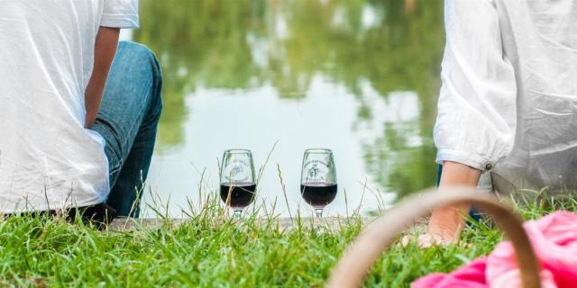 Vignes Et Vins En Vallée Du Loir