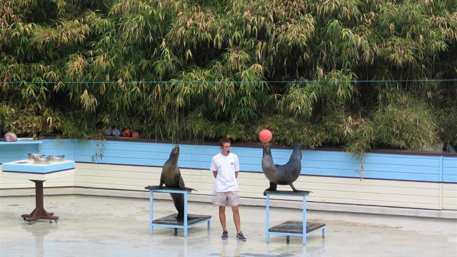 Zoo De La Fleche (6)