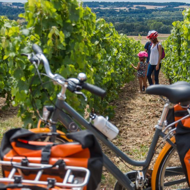 La vallée du Loir à vélo - Vignoble Jasnières et Coteaux du Loir