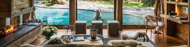 2016 04 28 Zoo De La Fleche 80 Arctic
