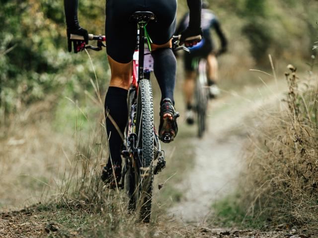 Vélo en pleine nature