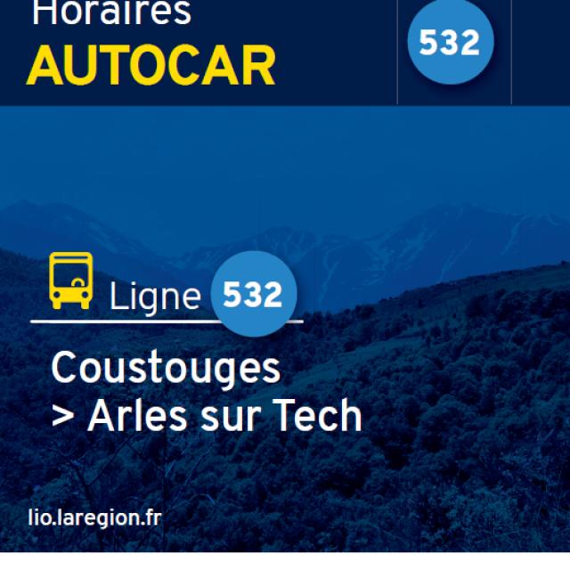 Bus Ligne 532