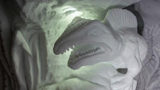 Pascal Tournaire, grottes de Glace