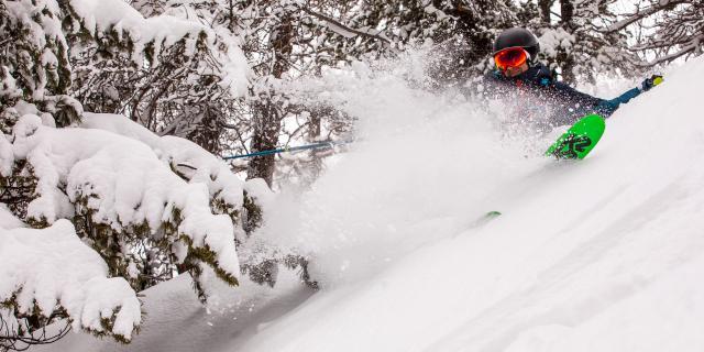 Skieur en poudreuse dans une forêt enneigée